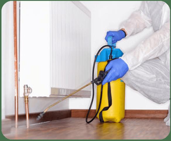 Pest Control Bendigo